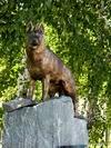 http://fantozer.narod.ru/image/dog/tn_memo_01.JPG